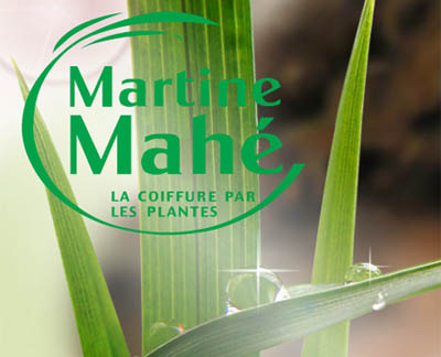 martine mah teintures aux plantes - Coloration Martine Mah