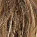 Perruque Malibu Luxury 100% fait main - bernstein mix - Classe II - LPP1277057 - Raquel Welch