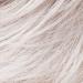 Perruque Nebraska Comfort silver mix - Raquel Welch - Classe II - LPP1277057
